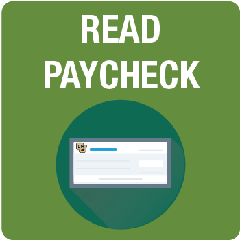Read Paycheck