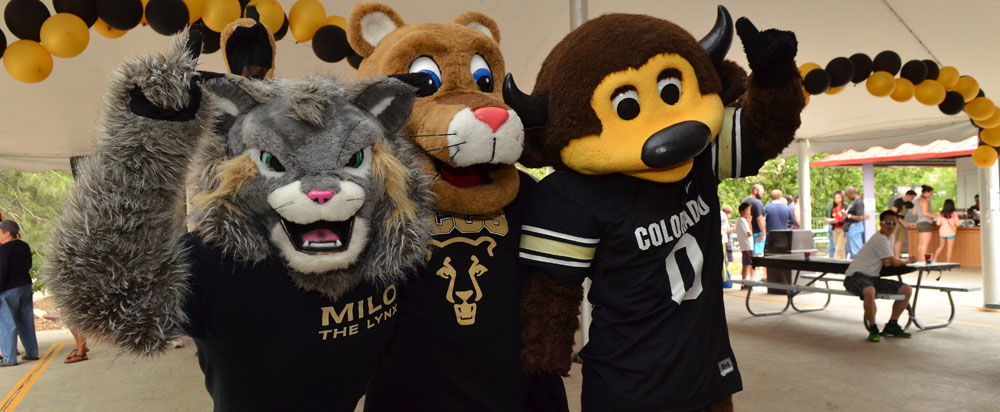CU has mascots at three of its campuses: From left, Milo the Lynx (CU Denver), Clyde the Mountain Lion (UCCS) and Chip the Buffalo (CU-Boulder)