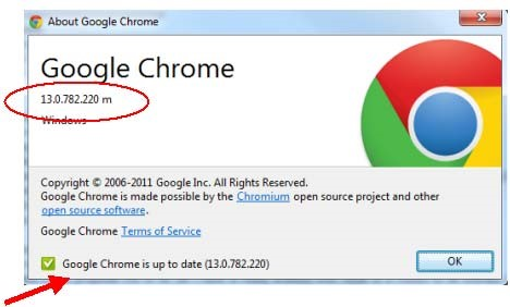 How to check the internet browser version | University of