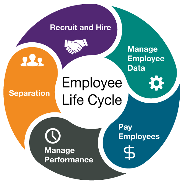 employment transition over life cycle Employment transitions over the life cycle: a statistical analysis by diane perrons and wendy sigle-rushton topics: hc economic history and conditions.