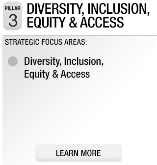 Pillar 3: Diversity, Inclusion, Equity & Access