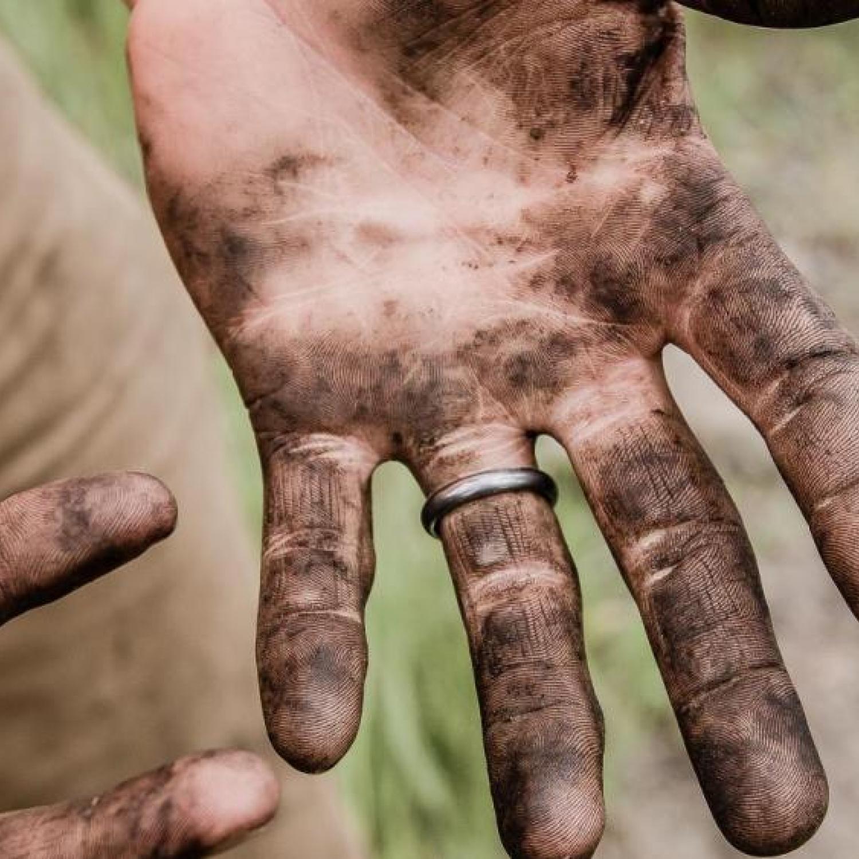 Dirt as a vaccine