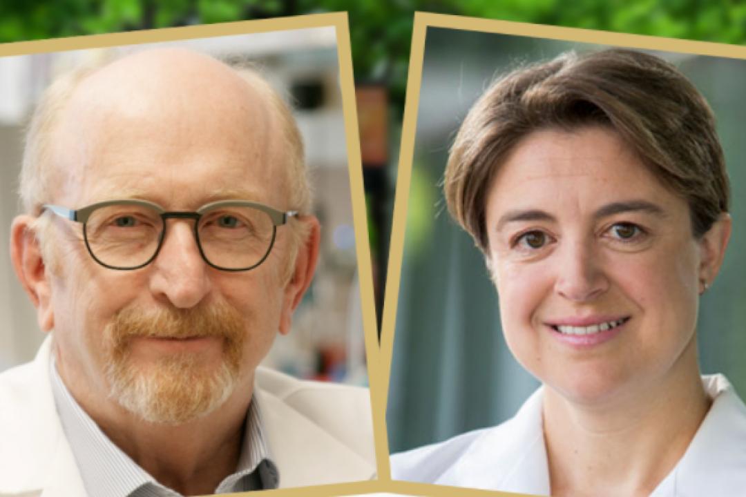 Headshots of  V. Michael Holers, MD and Kristi Kuhn, MD, PhD.